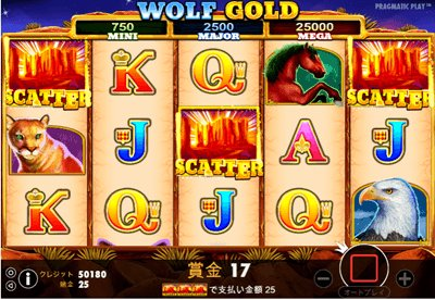 WOLF GOLD 解説1