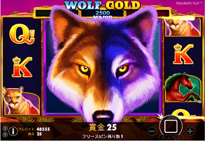 WOLF GOLD 解説2