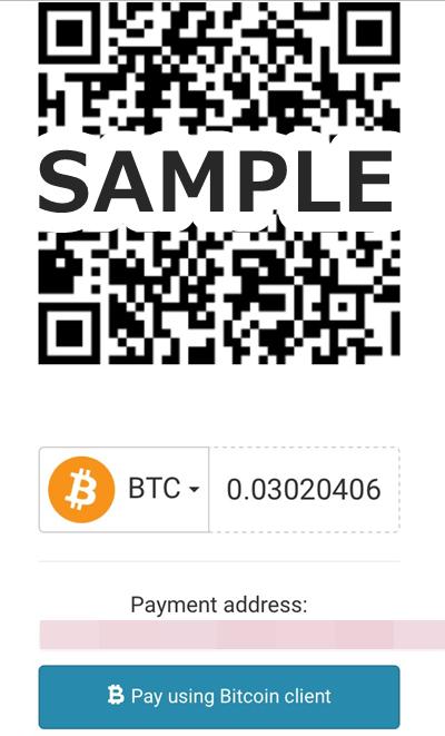 ビットコインをecoPayzに入金する7(スマホ)