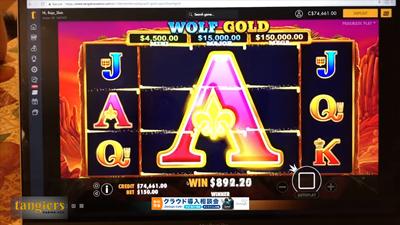 Wolf Gold2